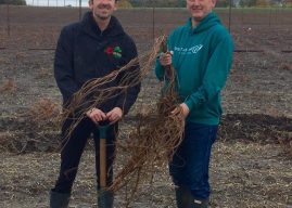 Hogs BackBrewery 'Adopt a Hop' helps hospice care