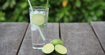 Indian craft Gin & Tonic