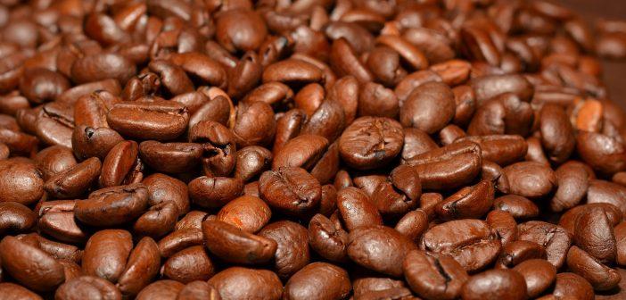 Melitta Professional Coffee Solutions has recruited Brad Journet-Robins